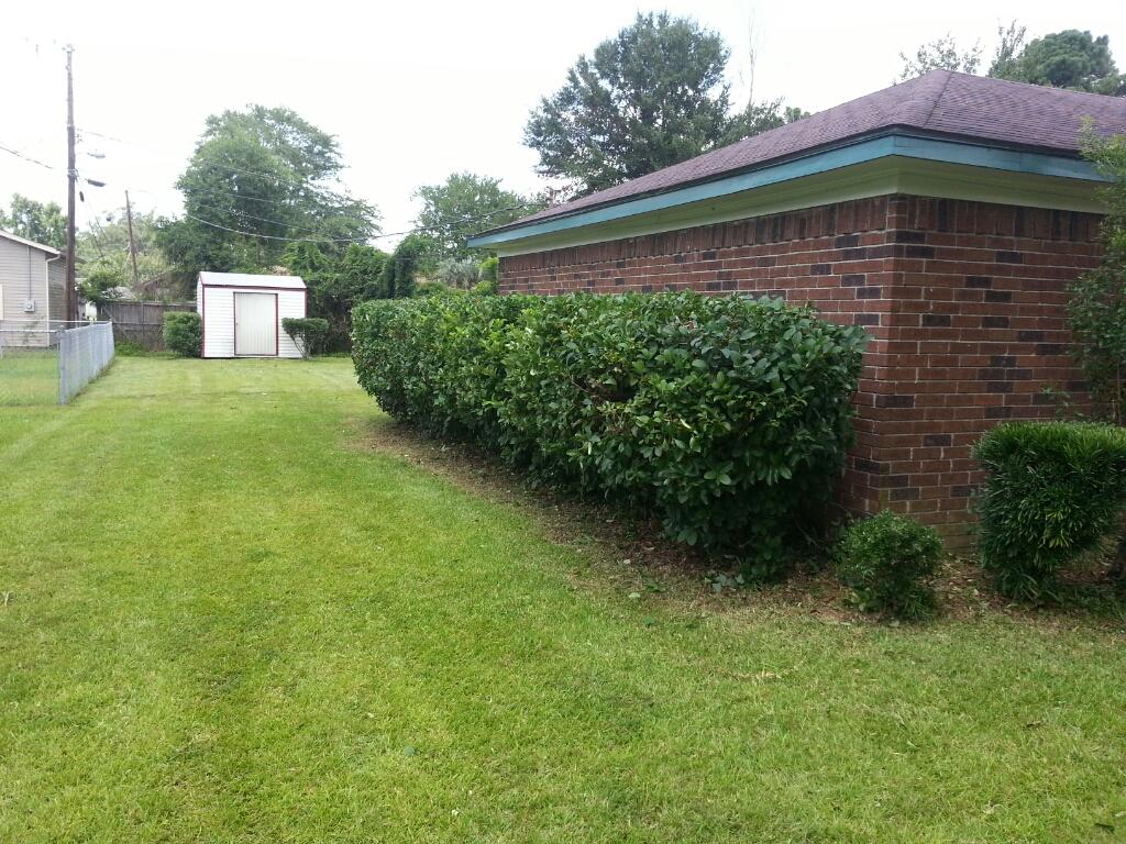Hedge Trimming Savannah Pooler Richmond Hill Georgia
