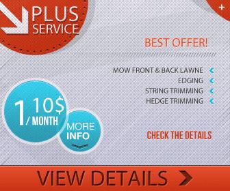 Plus Lawn Service 336x280