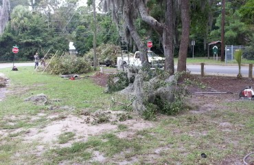 Property Cleanup Savannah Georgia