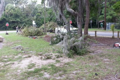 Property Cleanup Savannah Georgia