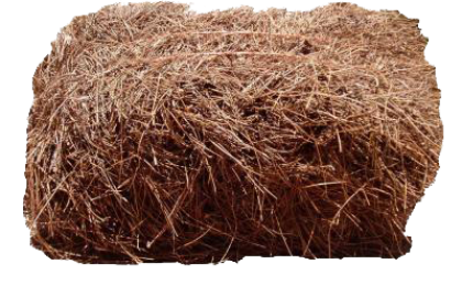 bale of pine straw savannah georgia