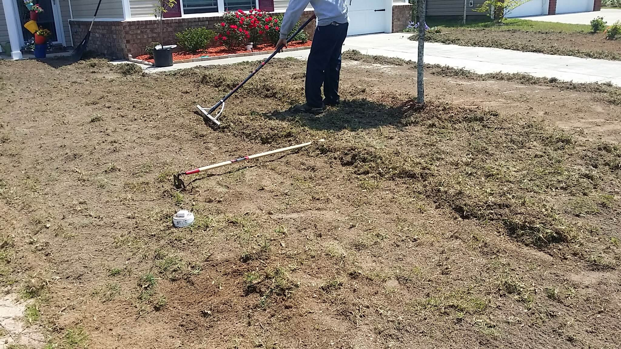 Sod Installation Savannah Free Estimates Chatham Property